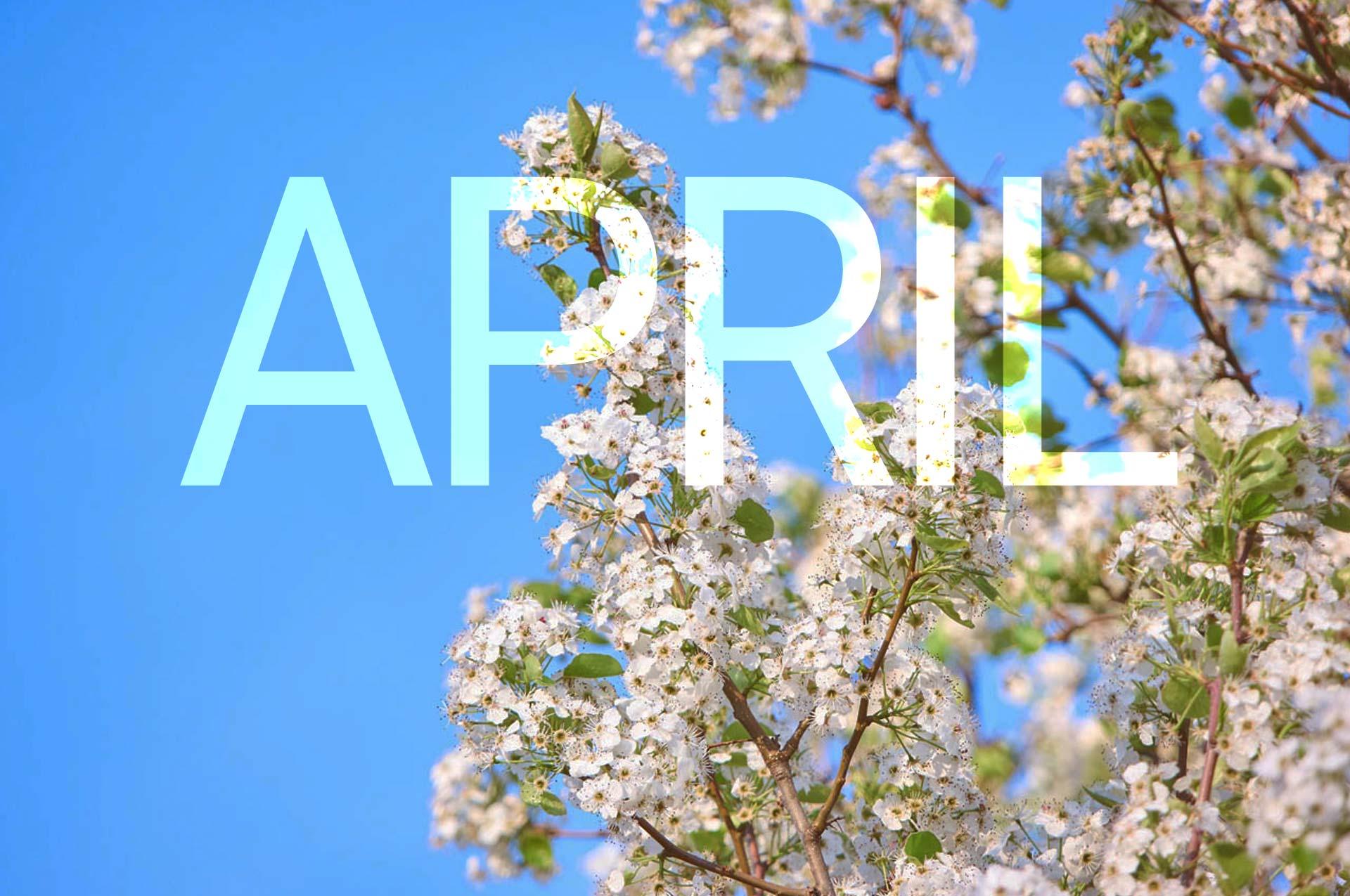 Pagezii Monhtly Blog Roundup April