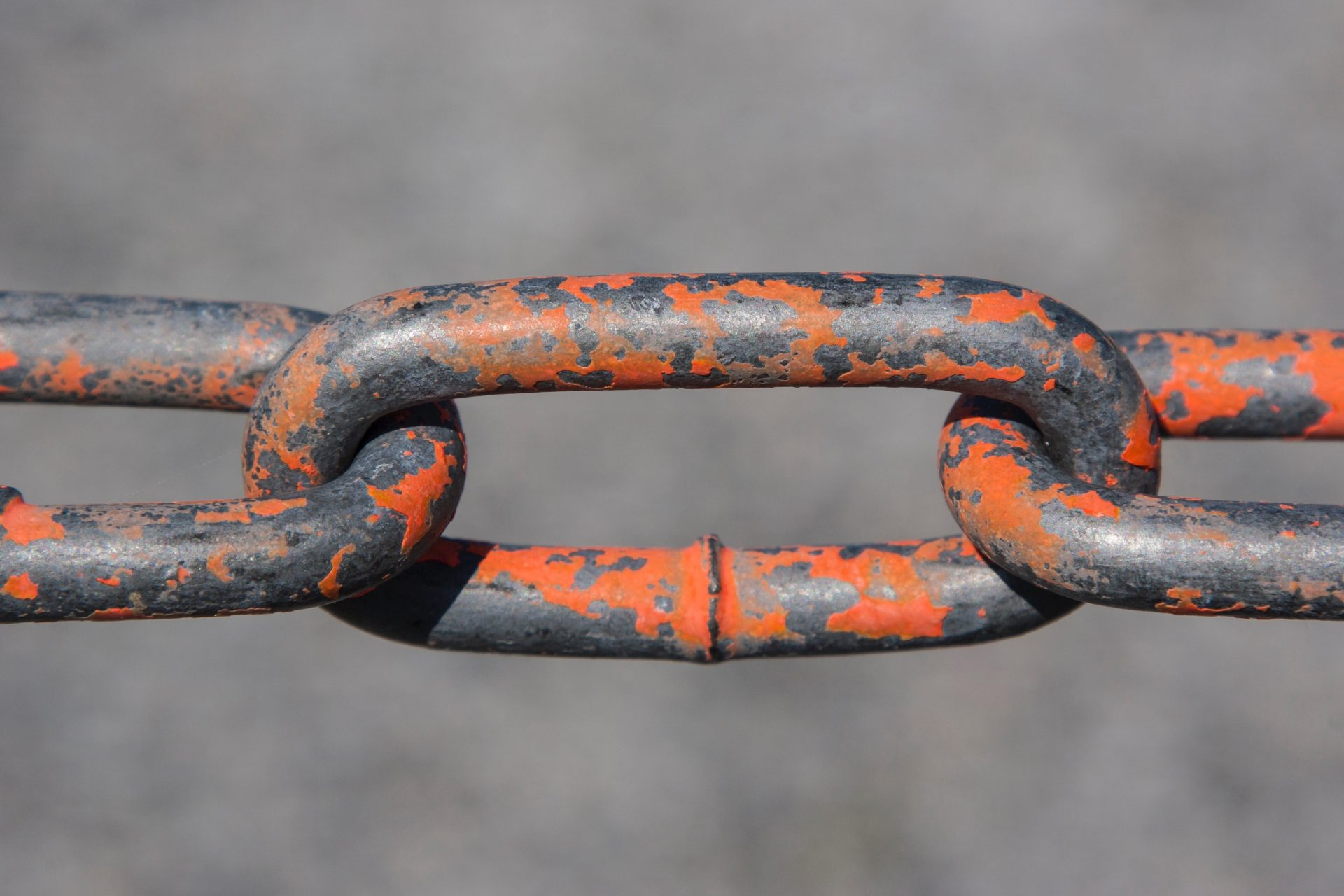 What is Link Building In SEO Pagezii Digital Marketing Blog